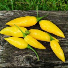 habanero-lemon